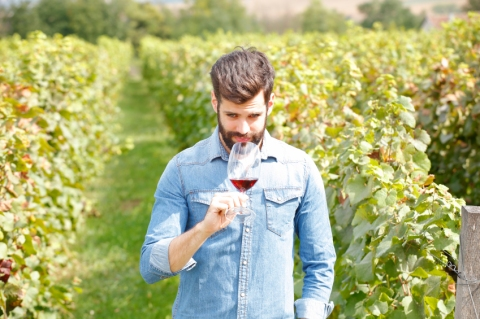 Portrait of young winemaker holding in his hand a glass of red wine and smelling it while standing in vineyards. Small business.